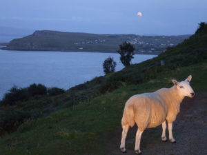 Aird Cottage :: Moonrise over Staffin