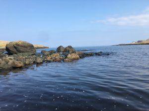 Aird Cottage :: The Bay